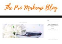 The Pro Makeup Blog