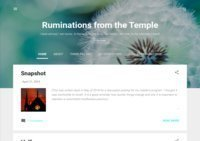 Ruminations from the Temple